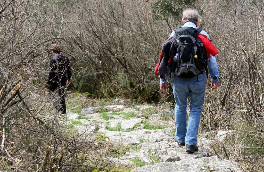 Radus path