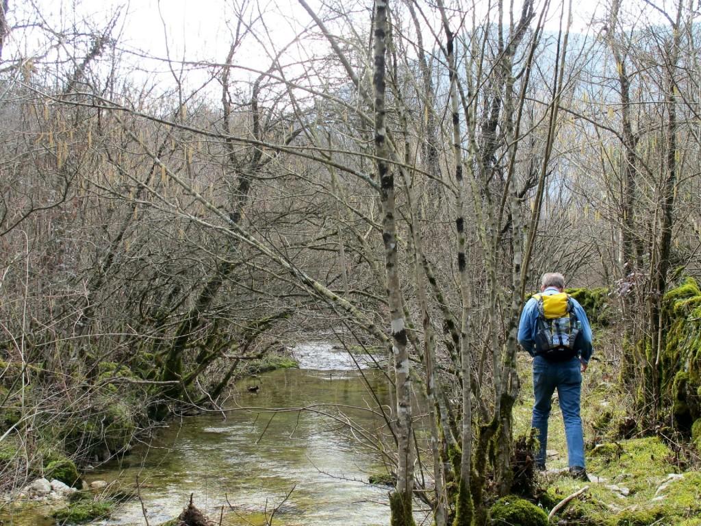 spring Skadar Lake2.1