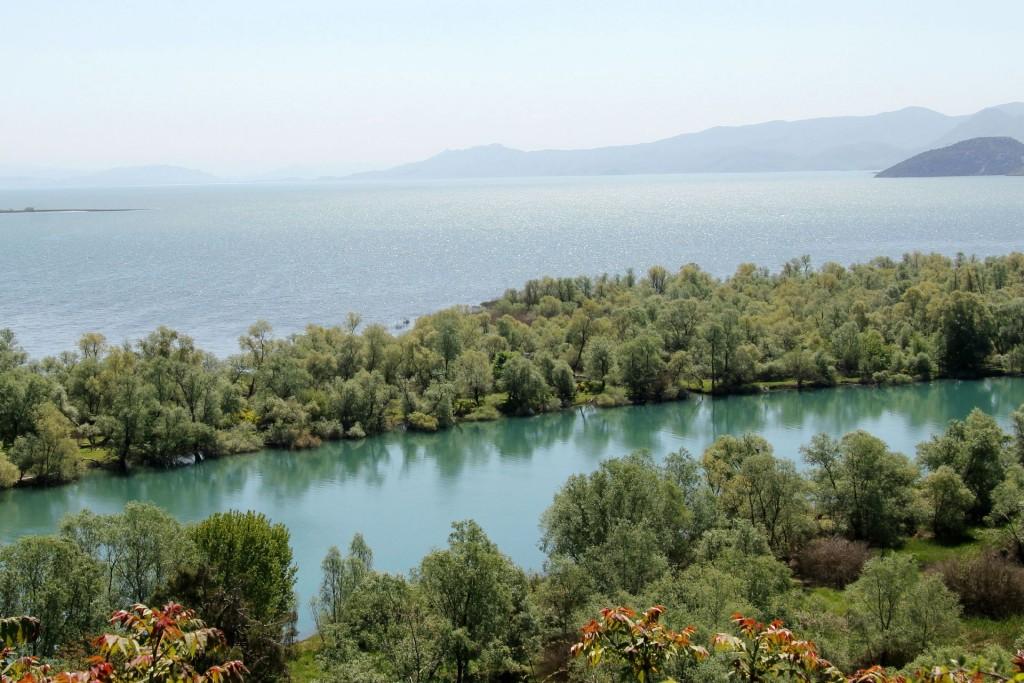 Skadar Lake1 Moraca delta