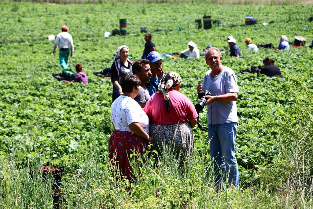 Bulgaria5 strawberry pickers