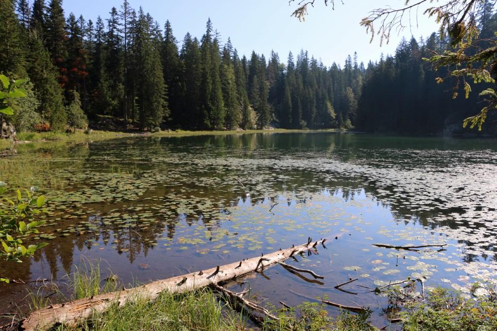 Durmitor5 Zminje jezero