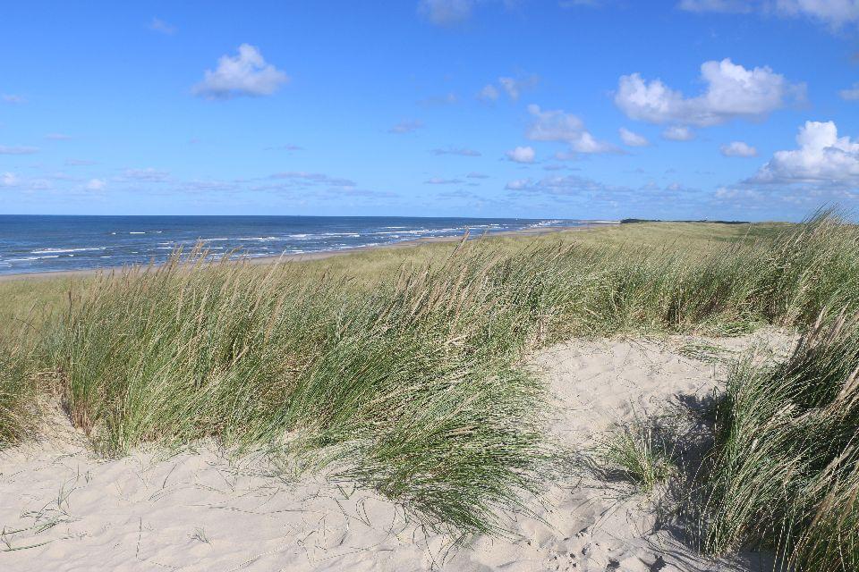 Texel6 the dunes