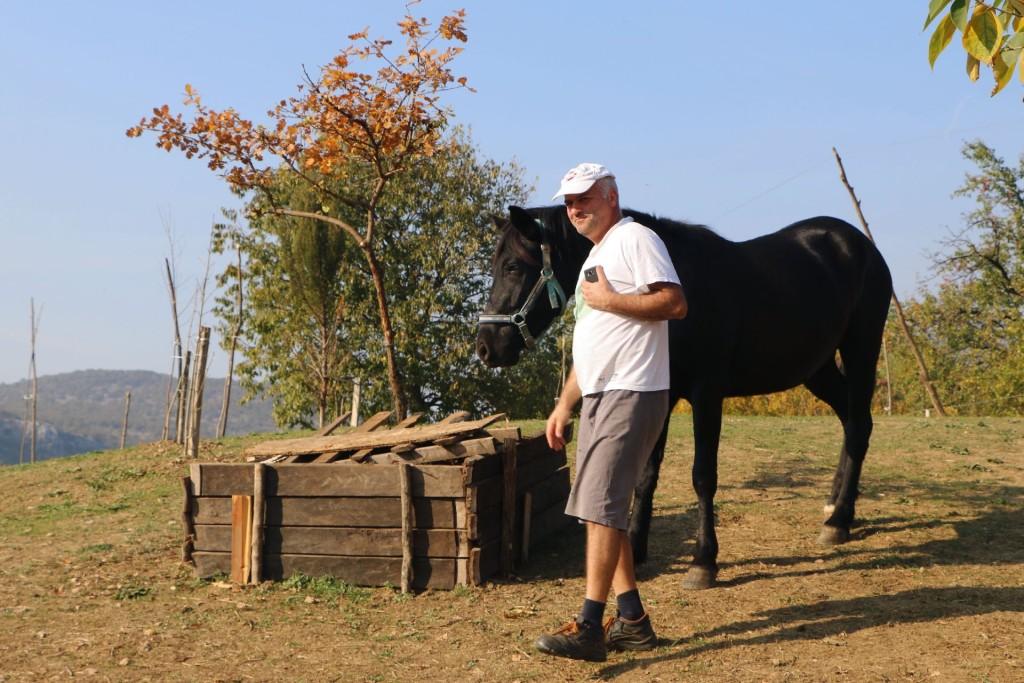 Donkey farm5 Martinici Darko Saveljic
