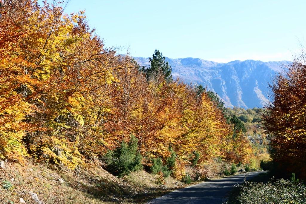 autumn1 kucka krajina
