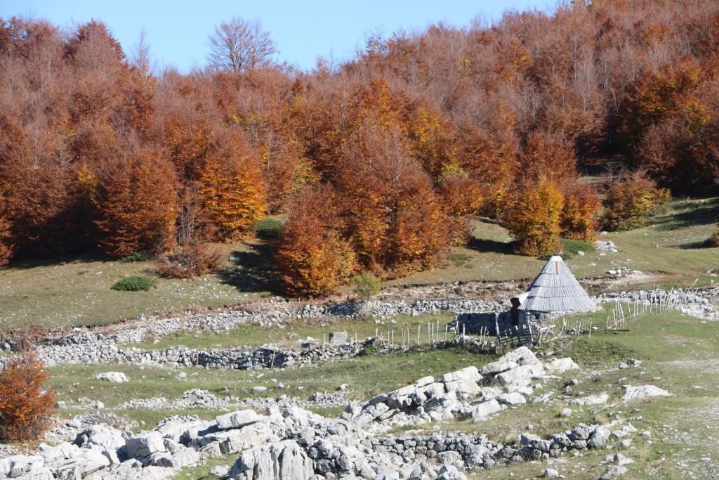 autumn2 kucka korita