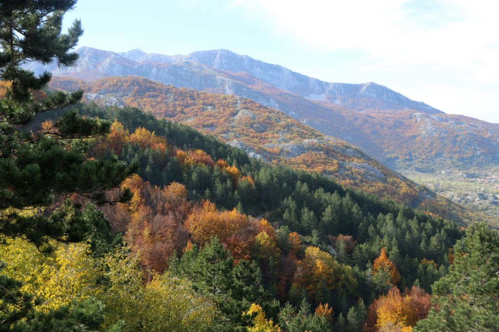 autumn4 Lovcen Njegusi