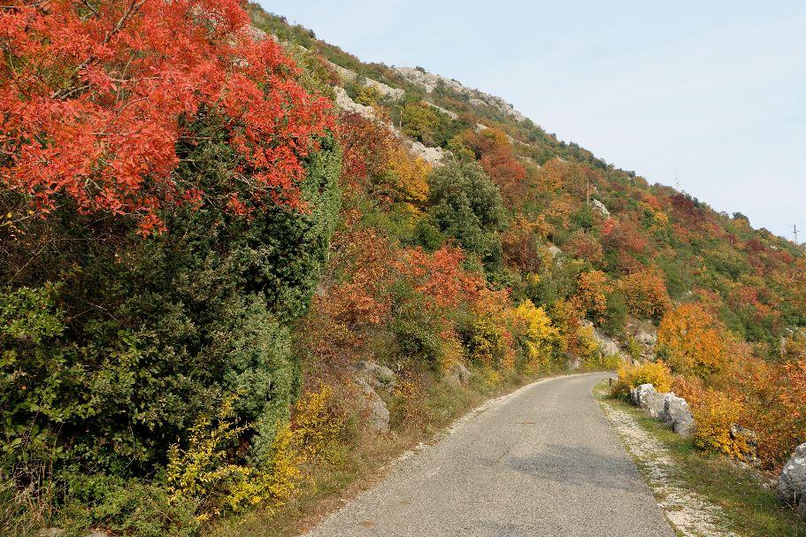 autumn6 katunska nahija