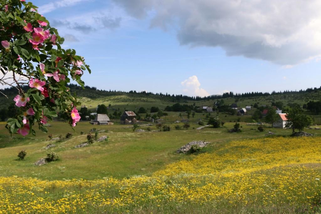 Mala Crna Gora4