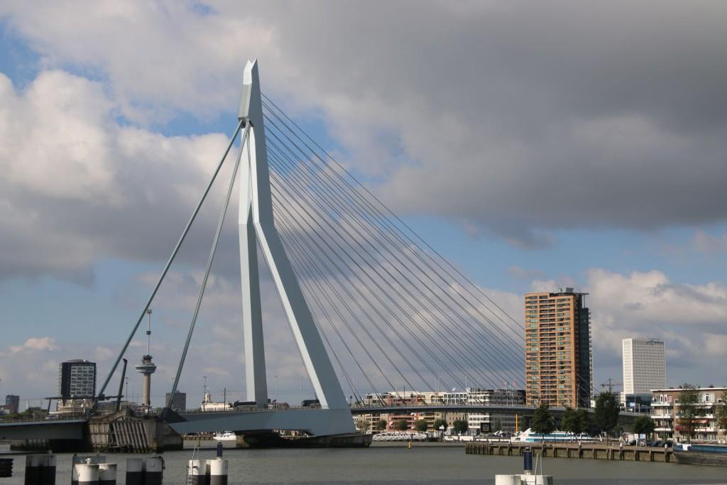 rotterdam7-erasmus-bridge