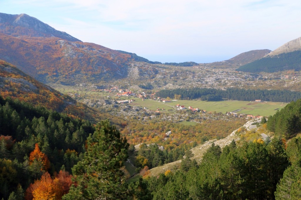 View of Njeguši