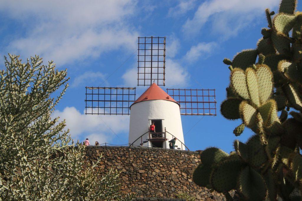 Lanzarote2 Jardin de Cactus