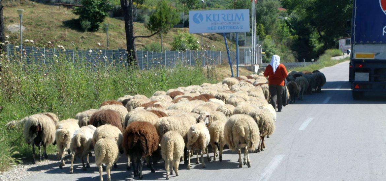 roads of Albania1