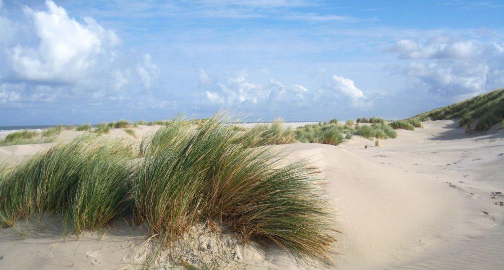 Dutch skies2 sand dunes